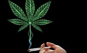 GreenWay Mass Ending Marijuana Prohibition in Massachusetts